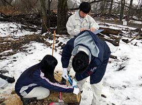 流木を河原で「腐朽」処理/帯広工高生らが研究