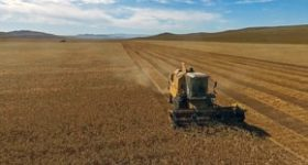 モンゴル通信「農業事情リポート」 NGO組織AML発