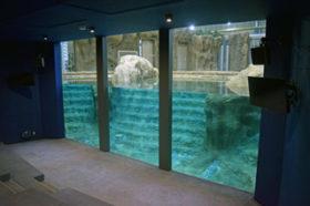 円山動物園に来春ゾウ舎 国内初の屋内プールも