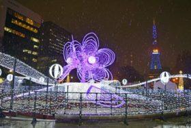 冬彩る「光の芸術」さっぽろホワイトイルミネーション開幕