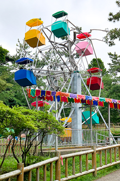 函館公園の観覧車が国の文化財に 現役では国内最古