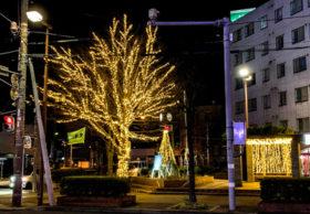 冬の街並み彩るイルミネーションで電気工事業をPR