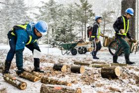 帯広工高が伐採木の腐朽研究 屋外環境下で調査