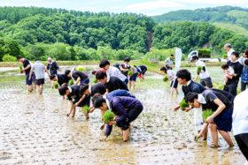 走り出したSDGs~建設業が取り組む意味(2)岩田地崎建設