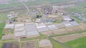 幌村建設がアスパラ栽培 建設現場の経験生かす