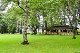 試験的にキャンプ場開放 清水町が清水公園の再整備へ